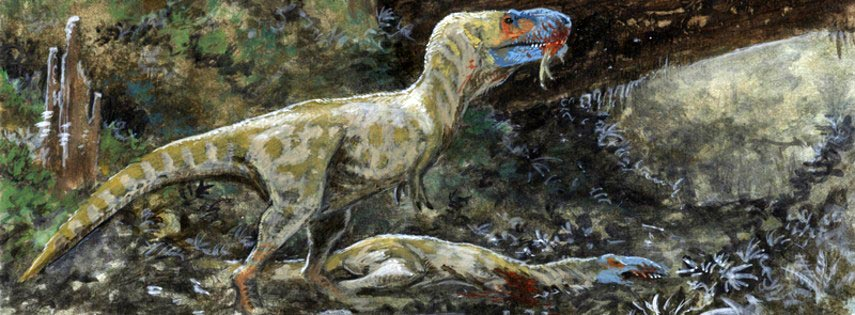 Daspletosaurus illustration. Image credit: Tuomas Koivurinne