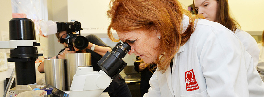 Duchess of York looking at Microscope